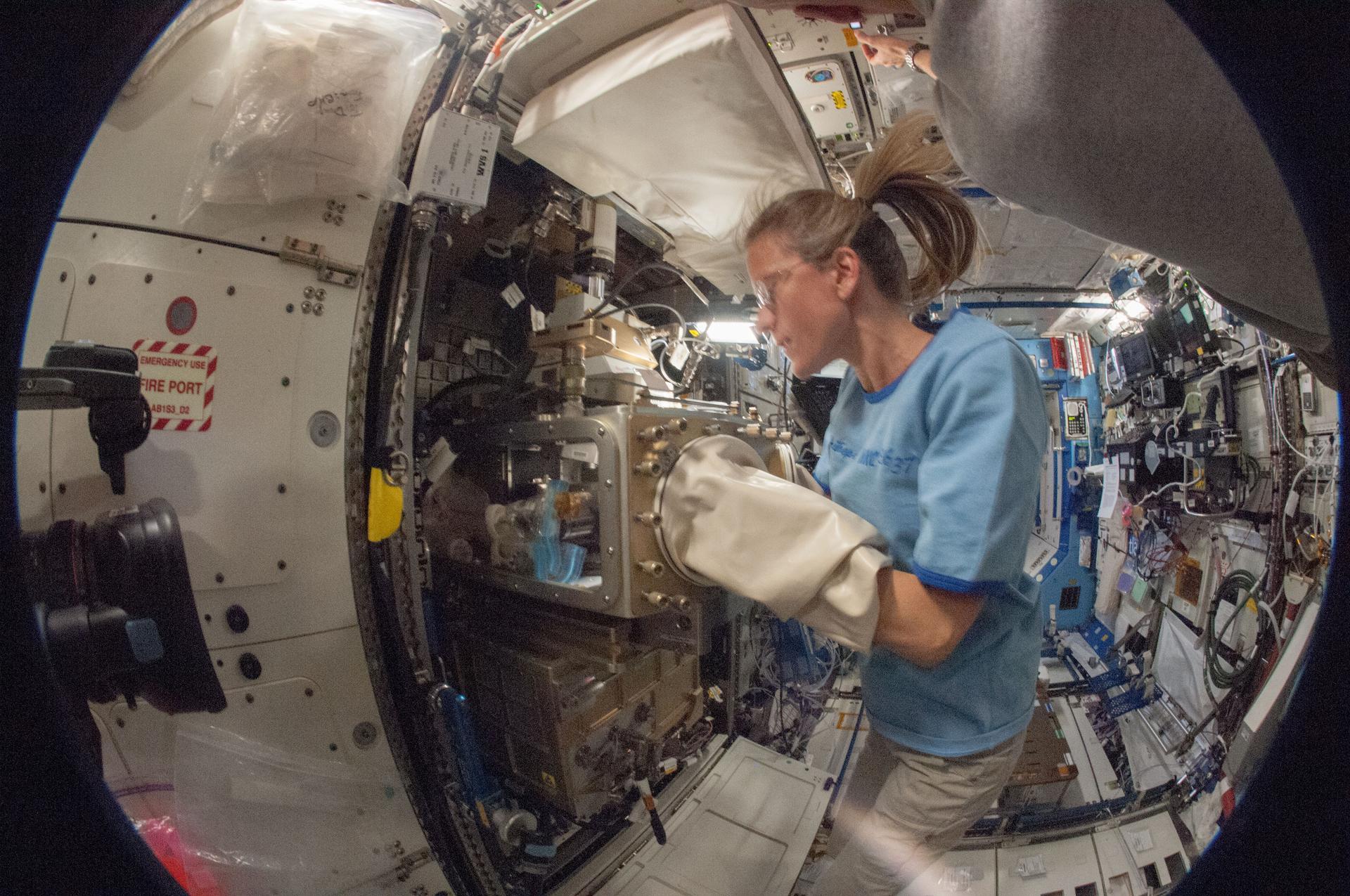 Astronautka Karen Nyberg przeprowadzająca badania w ramach poprzedniego eksperymentu, ACE-1 (Advanced Colloids Experiment) (Źródło: NASA)